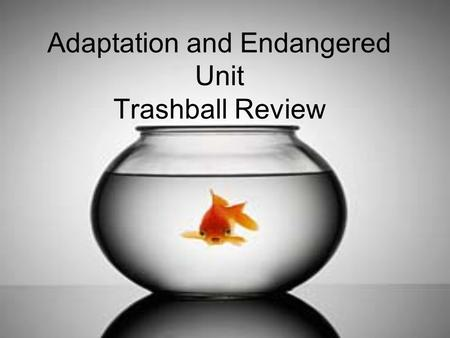Adaptation and Endangered Unit Trashball Review. A trait that helps an organism survive and reproduce ADAPTATION.
