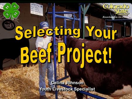 Youth Livestock Specialist