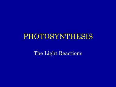 PHOTOSYNTHESIS The Light Reactions. Photosynthesis: An Overview of the Light and 'Dark' Reactions Occurs in Photoautotrophs (organisms that can make their.