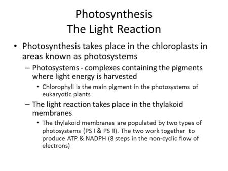 Photosynthesis The Light Reaction Photosynthesis takes place in the chloroplasts in areas known as photosystems – Photosystems - complexes containing the.