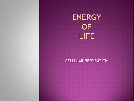 CELLULAR RESPIRATION. By the end of the lesson (s), I can:  Describe the process of cell respiration, including reactants and products, glycolysis, the.