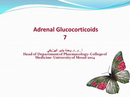 Adrenal Glucocorticoids 7 أ. م. د. وحدة بشير اليوزبكي Head of Department of Pharmacology- College of Medicine- University of Mosul-2014.