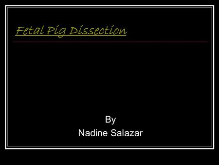 Fetal Pig Dissection By Nadine Salazar. Female External Male Female internal Female internal Female external Female external Mouth Heart Digestive system.