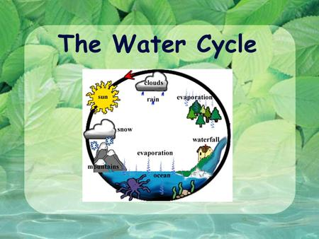 The Water Cycle. W ATER C YCLE ( AKA H YDROLOGIC C YCLE ) Continuous movement of water from the atmosphere to the earth's surface and back to the atmosphere.