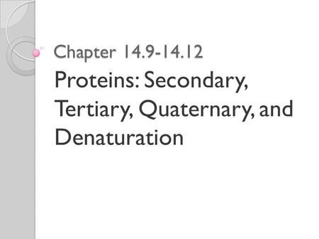 Chapter 14.9-14.12 Proteins: Secondary, Tertiary, Quaternary, and Denaturation.