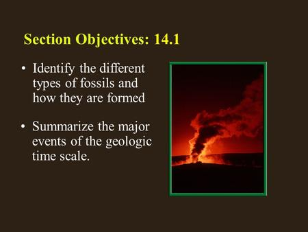 1 14.1 Section Objectives – page 369 Identify the different types of fossils and how they are formed Section Objectives: 14.1 Summarize the major events.