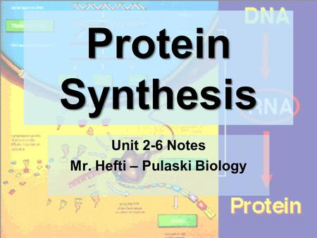 Protein Synthesis Unit 2-6 Notes Mr. Hefti – Pulaski Biology.