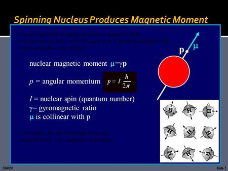 Spinning Nucleus Produces Magnetic Moment