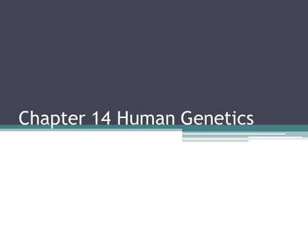 Chapter 14 Human Genetics. 14.1 Human Chromosomes Genome = the full set of genetic information that an organism carries in its DNA Karyotype = the complete.