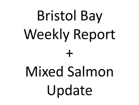 Bristol Bay Weekly Report + Mixed Salmon Update. If you do not work with Bristol Bay data, feel free to take a break now.