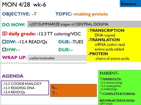 12.3 DNA, RNA and PROTEIN  WHAT YOU WILL LEARN -3 types of RNA ...