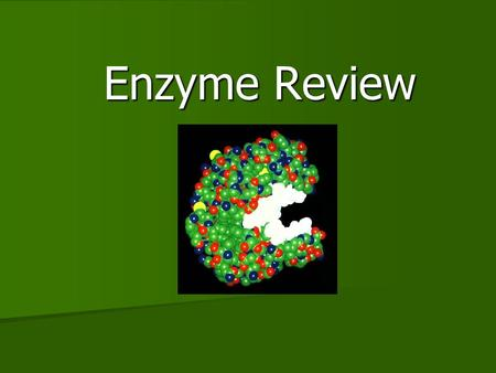 Enzyme Review Enzyme Review. 2 What Are Enzymes? Enzymes are Proteins that speed up chemical reactions. They act as Catalysts to break and form bonds.