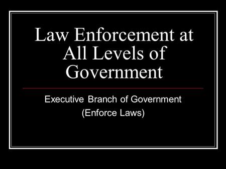 Law Enforcement at All Levels of Government Executive Branch of Government (Enforce Laws)