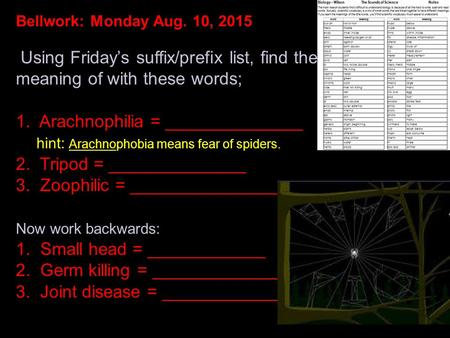Bellwork: Monday Aug. 10, 2015 Using Friday's suffix/prefix list, find the meaning of with these words; 1. Arachnophilia = ______________ hint: Arachnophobia.