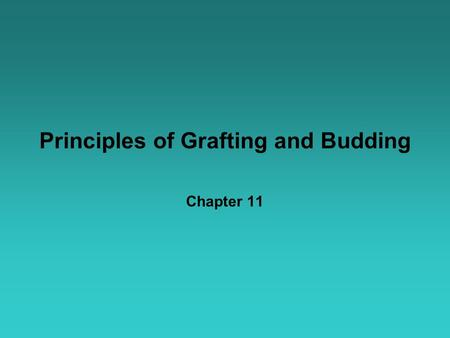 Principles of Grafting and Budding Chapter 11. Grafting & Budding Terms Graft: Two living plants connected and growing as one Scion: Dormant shoot, upper.