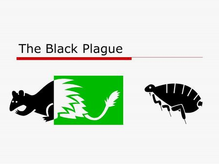 The Black Plague.