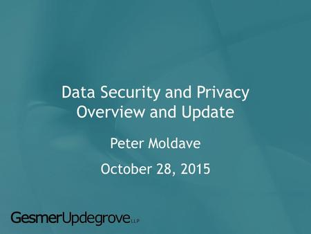 Data Security and Privacy Overview and Update Peter Moldave October 28, 2015.