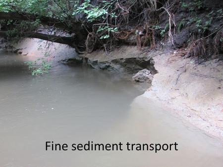 Fine sediment transport. Fines Till derived soils (e.g., Clarion) ~ 45-70% fines Alluvial soils (e.g., Coland) 65-80% fines Loess-derived soils ~ > 80%
