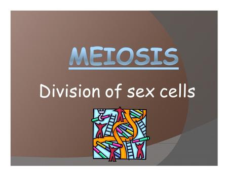 Division of sex cells. MEIOSIS VOCABULARY: Diploid = a cell containing TWO sets of chromosomes. one set inherited from each parent 2n (number of chromosomes)