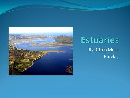 By: Chris Moss Block 3. Where are they? Places of transition from land to sea, and from fresh to salt water. In the U.S, estuaries make up more than 80%