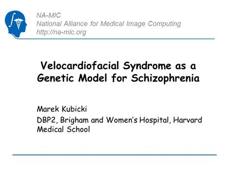 NA-MIC National Alliance for Medical Image Computing  Velocardiofacial Syndrome as a Genetic Model for Schizophrenia Marek Kubicki DBP2,