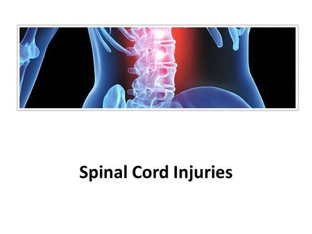 Spinal Cord Injuries. Protection of the Central Nervous System - understand  Scalp and skin  Skull and vertebral column  Meninges.