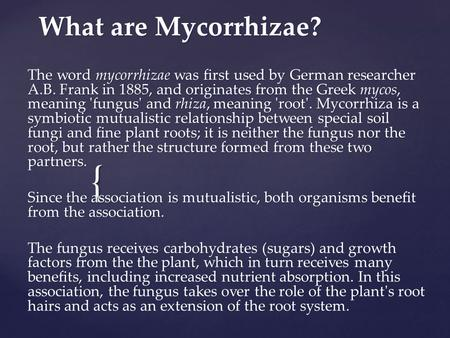 { What are Mycorrhizae? The word mycorrhizae was first used by German researcher A.B. Frank in 1885, and originates from the Greek mycos, meaning 'fungus'