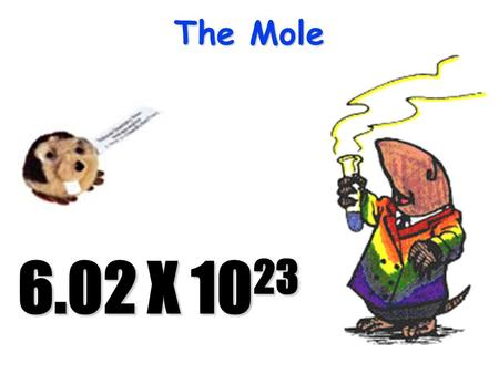 The Mole 6.02 X 10 23 The Mole 1 pair = 2 representative particles1 pair = 2 representative particles 1 dozen = 12 representative particles1 dozen =