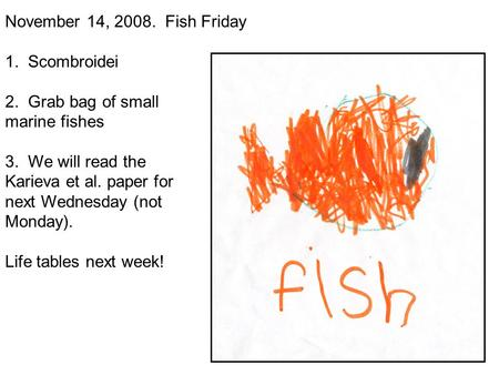 November 14, 2008. Fish Friday 1. Scombroidei 2. Grab bag of small marine fishes 3. We will read the Karieva et al. paper for next Wednesday (not Monday).