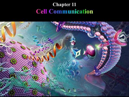 Chapter 11 Cell Communication. Local signaling: Paracrine Synaptic Long distance signaling: Hormonal. Chapter 11 Cell Communication.