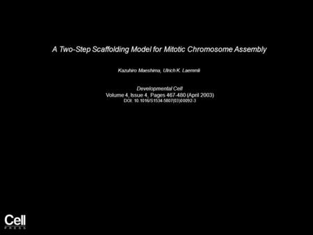 A Two-Step Scaffolding Model for Mitotic Chromosome Assembly Kazuhiro Maeshima, Ulrich K. Laemmli Developmental Cell Volume 4, Issue 4, Pages 467-480 (April.