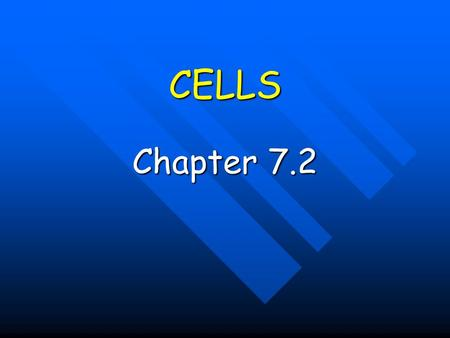 CELLS Chapter 7.2. CELL THEORY Anton van Leeuwenhoek - Dutch lens maker who developed the first simple microscope Anton van Leeuwenhoek - Dutch lens maker.