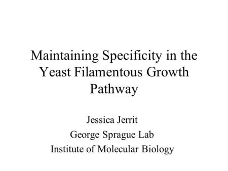 Maintaining Specificity in the Yeast Filamentous Growth Pathway Jessica Jerrit George Sprague Lab Institute of Molecular Biology.