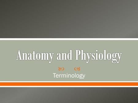  Terminology. Anatomy The scientific discipline that investigates the structure of the body.