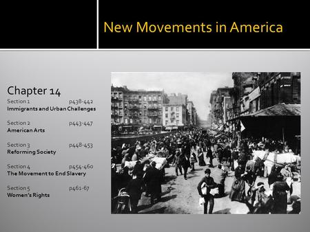 New Movements in America Chapter 14 Section 1 p438-442 Immigrants and Urban Challenges Section 2 p443-447 American Arts Section 3 p448-453 Reforming Society.