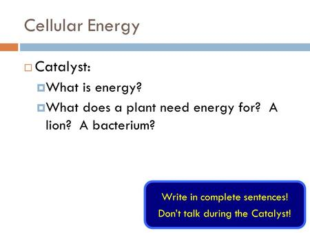Cellular Energy  Catalyst:  What is energy?  What does a plant need energy for? A lion? A bacterium? Write in complete sentences! Don't talk during.