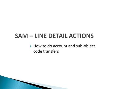 SAM – LINE DETAIL ACTIONS  How to do account and sub-object code transfers.