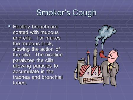 Smoker's Cough  Healthy bronchi are coated with mucous and cilia. Tar makes the mucous thick, slowing the action of the cilia. The nicotine paralyzes.