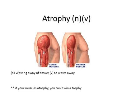 Atrophy (n)(v) (n) Wasting away of tissue; (v) to waste away ** if your muscles atrophy, you can't win a trophy.