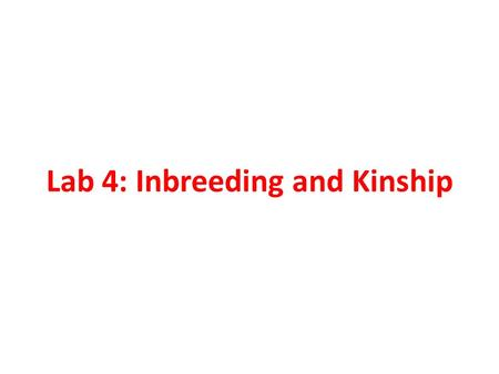 Lab 4: Inbreeding and Kinship. Inbreeding Reduces heterozygosity Does not change allele frequencies.