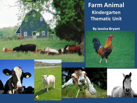 Farm Animal Kindergarten Thematic Unit By Jessica Bryant.