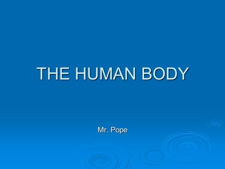 THE HUMAN BODY Mr. Pope.