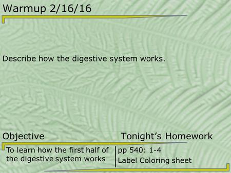 Warmup 2/16/16 Describe how the digestive system works. Objective Tonight's Homework To learn how the first half of the digestive system works pp 540:
