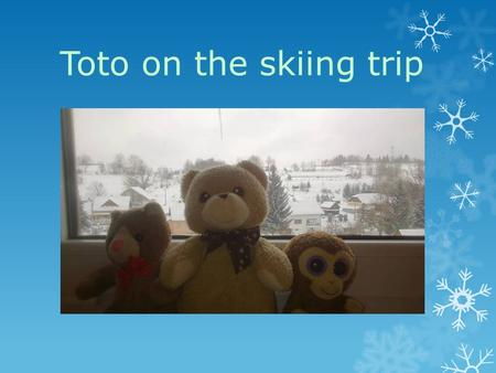 Toto on the skiing trip. Viki, Miška, Terka and Betka started unpacking. They are sharing their room with Toto, COCONUT monkey and teddy MACULKA.