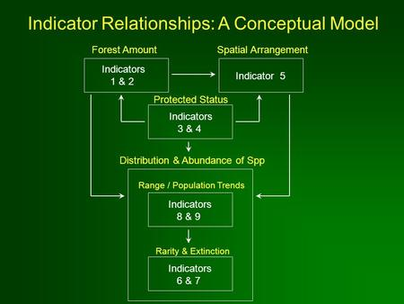Indicator Relationships: A Conceptual Model Forest Amount Indicators 1 & 2 Spatial Arrangement Indicator 5 Protected Status Indicators 3 & 4 Distribution.