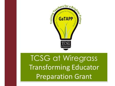 TCSG at Wiregrass Transforming Educator Preparation Grant TCSG at Wiregrass Transforming Educator Preparation Grant.