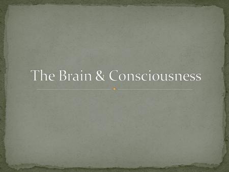 What is the relationship between mind & body? Does the mind exist separate from the body?