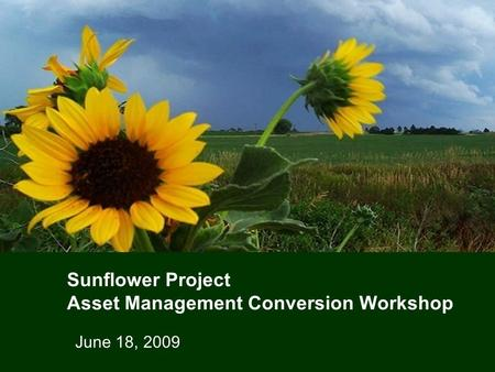 Sunflower Project Asset Management Conversion Workshop June 18, 2009.