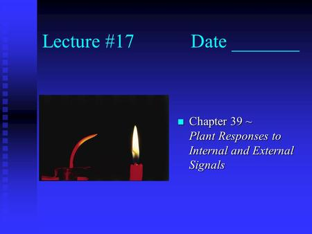 Lecture #17 Date _______ n Chapter 39 ~ Plant Responses to Internal and External Signals.