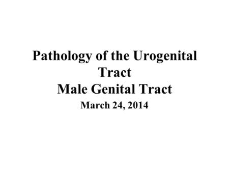 Pathology of the Urogenital Tract Male Genital Tract March 24, 2014.